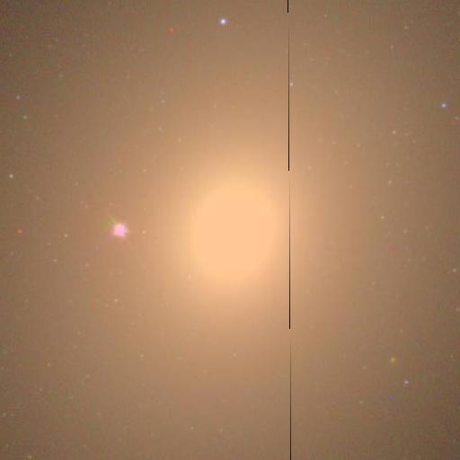 321 M49