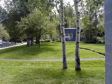 The Aspen Center for Physics
